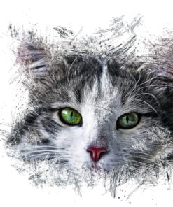 Cat Ink Art