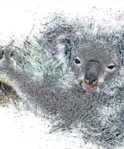 Koala Bär Ink Art Bild