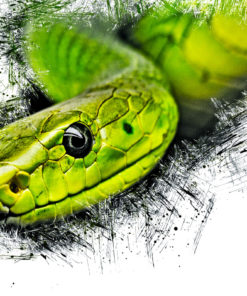 Snake Ink Art Bild